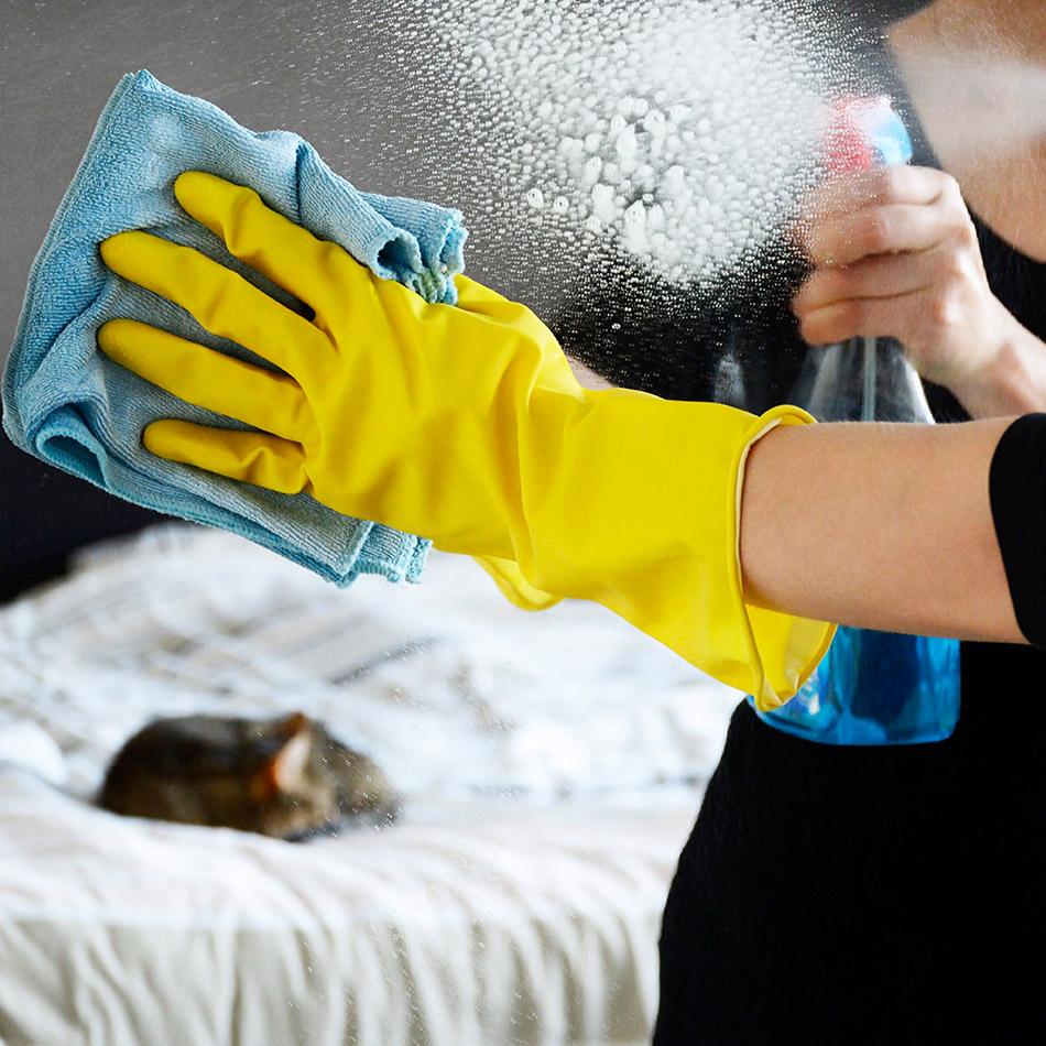 een-betrouwbaar-schoonmaakbedrijf-voor-thuis-of-kantoor.jpg
